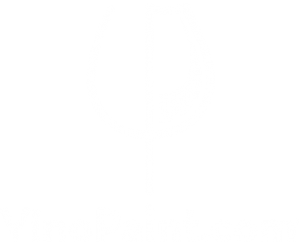 VinoPaint Exclusive live and virtual events