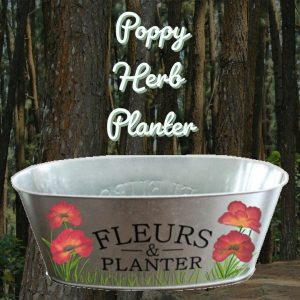 VinoPaint Exclusive - Poppy Herb Planter Virtual ONline Event
