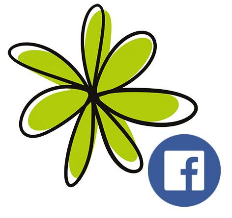 Sonya Paz Creative on Facebook